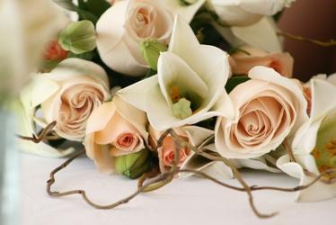 Hochzeitsgedichte-Universum